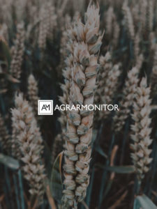 Agrarmonitor_Hintergrund4